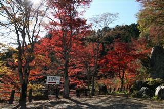 三蔵塔.jpg